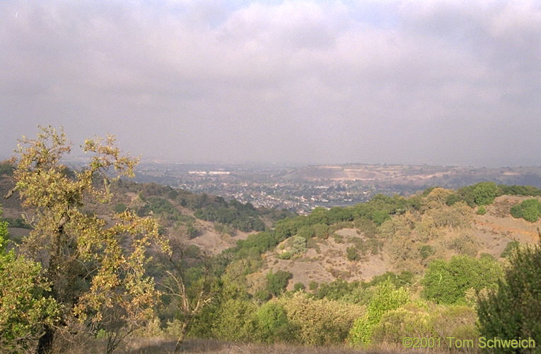 Looking north toward San Jose from Alamden, California.