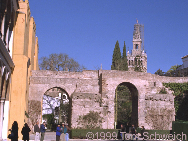 The oldest wall in the Alcazar.