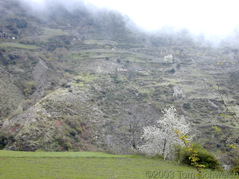 Looking across Barranco del Poqueira.