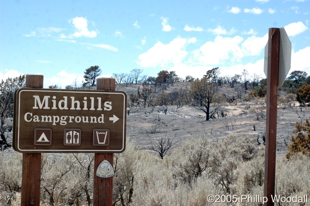 Mid Hills Campground, Hackberry Fire Complex, Mojave National Preserve, San Bernardino County, California