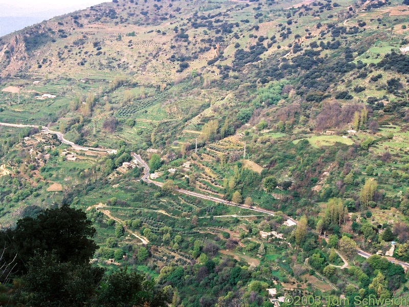 The road between Orgiva and Pampaneira